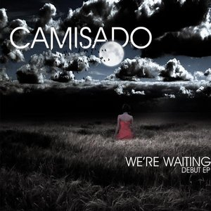 Image pour 'We're Waiting'