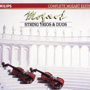 Image for '5. Menuetto (Allegretto) - Trio I-II'