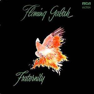 Image for 'Flaming Galah'
