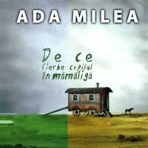Image for 'De Ce Fierbe Copilul in Mamaliga'