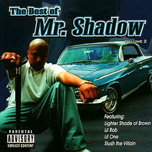 Image for 'The Best of Mr. Shadow Volume 2'