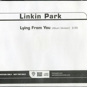 Bild für 'LYING FROM YOU'