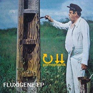 Image for 'Fluxigene'