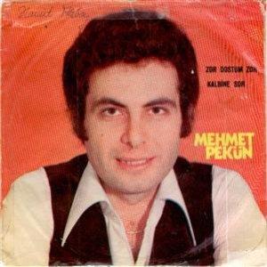 Image for 'Mehmet Pekün'