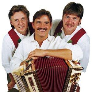 Immagine per 'Trio Alpin'