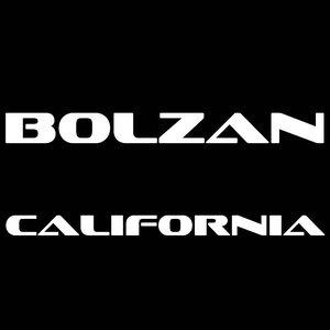 Image for 'BOLZAN - California (Original Mix)'