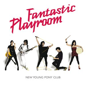Image for 'Fantastic Playroom'