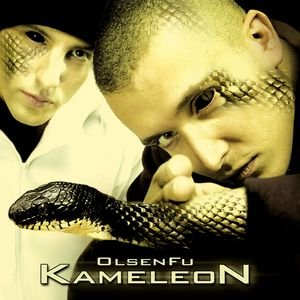 Image for 'Kameleon'