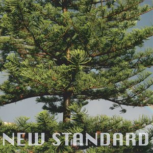 Image for 'New Standard'