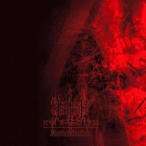 Image for 'Kontamination'