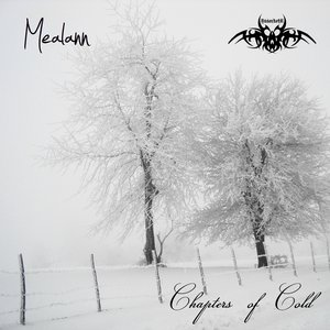 Image for 'Chapters of Cold'