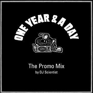 Bild för 'One Year & A Day - The Promo Mix'
