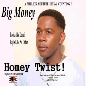 Image for 'Homey Twist'