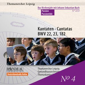 Image for 'Cantatas for Passiontide - The Liturgical Year with J.S. Bach, Vol. 4'