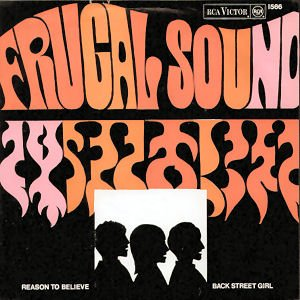 Image for 'The Frugal Sound'