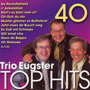 Image for '40 Trio Eugster Top Hits'
