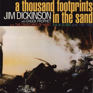 Image for 'A thousand footprints in the sand'
