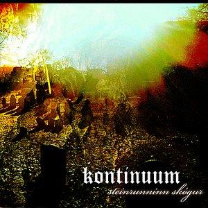 Image for 'Steinrunninn Skógur'