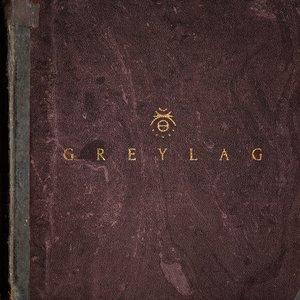Image pour 'Greylag'