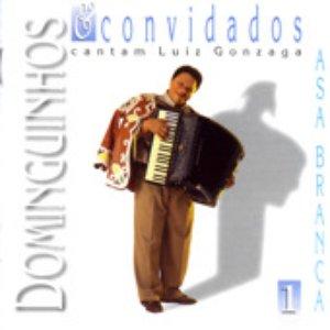 Imagen de 'Dominguinhos & Convidados Vol. 1'