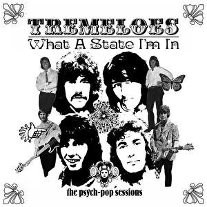 Image for 'What A State I'm In: The Psych-Pop Sessions'