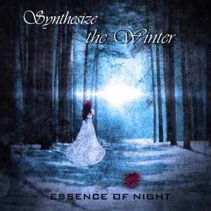 Image for 'Synthesize the Winter'