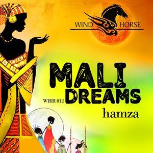 Image for 'Mali Dreams (Dub)'