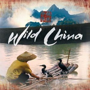 Image for 'Wild China OST'
