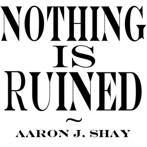 Image for 'Nothing Is Ruined'