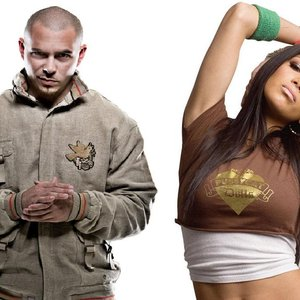 Image pour 'Pitbull feat. Nicole Scherzinger'