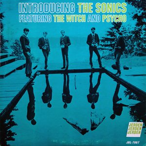Image for 'Introducing The Sonics'