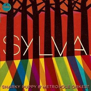 Image for 'Sylva'