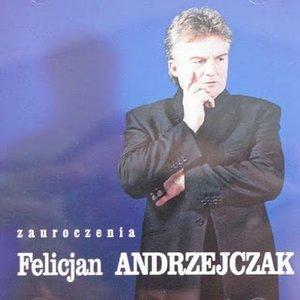 Image for 'Zauroczenia'