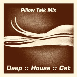 Image for 'January 2009 :: Cut 2 :: Pillow Talk Mix'