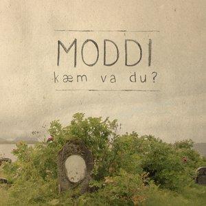Image for 'En sang om fly'