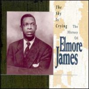 Image for 'The Sky Is Crying - The History Of Elmore James'