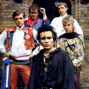 Bild für 'Adam and the Ants'