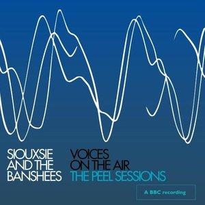 Image for 'Voices On The Air: The Peel Sessions'