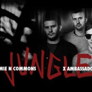 Image for 'X Ambassadors & Jamie N Commons'