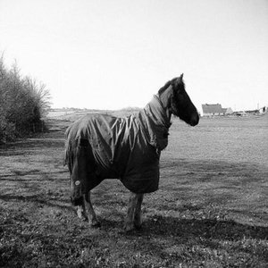 Image for 'One Horse'