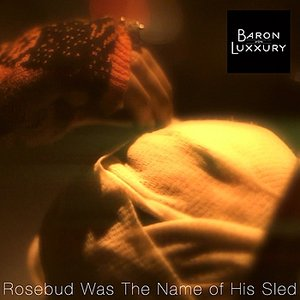 Image for 'Rosebud Was The Name Of His Sled'