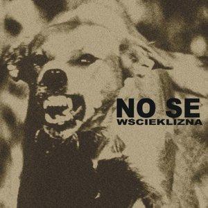 Image for 'Wścieklizna'