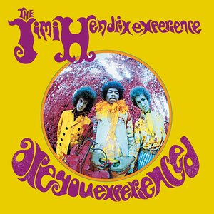 Image for 'Are You Experienced'