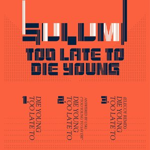 Image for 'Too Late to Die Young'