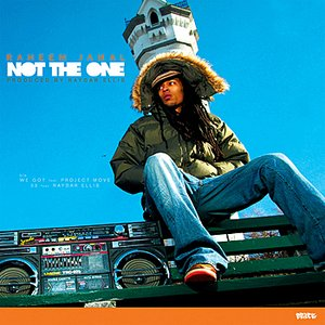 Image for 'Not The One'
