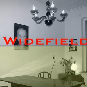 Image for 'Widefield'