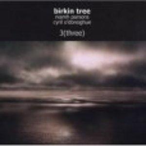 Image for 'Birkin Tree'