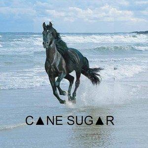 Bild för 'CANE SUGAR'