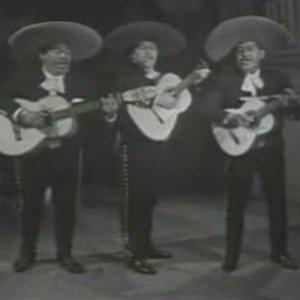 Bild für 'Trio Tariacuri'