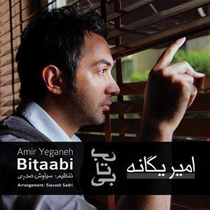 Image for 'Bitabi (Persian Music)'